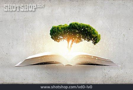 Education, Fantasy, Knowlege, Inspiration, Imagination