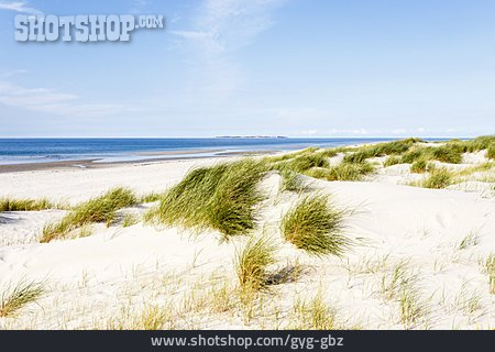 Beach, North Sea, Amrum