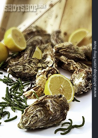 Delicacy, Oysters