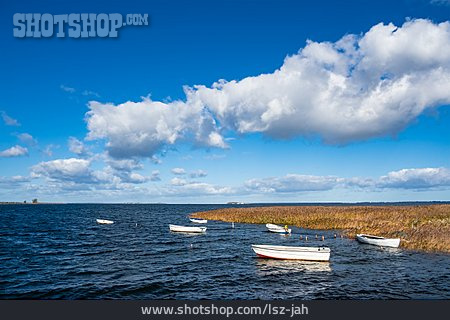 Baltic Sea, Denmark, Boats, Moen