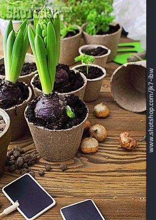 Gardening, Gardening, Gardening