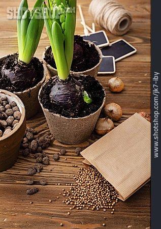 Gardening, Sowing, Gardening Time