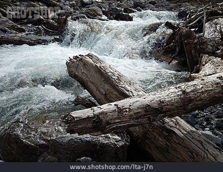 Torrent, Driftwood