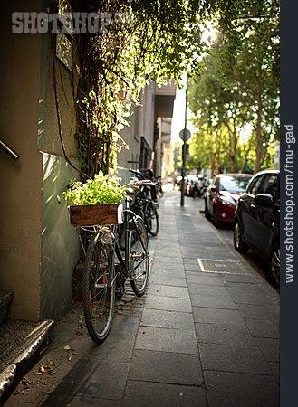 Environment Protection, Bicycle, Urban Gardening