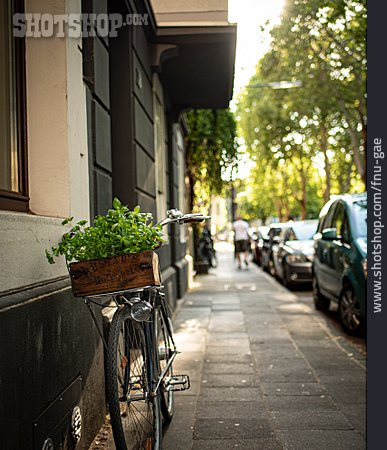 Environment Protection, Bicycle, Climate Protection, Urban Gardening