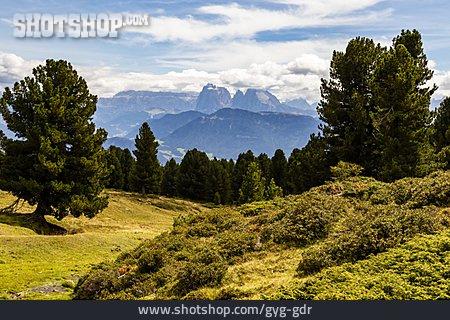 South Tyrol, Alto Adige