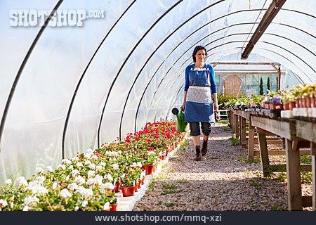 Garden Center, Gardening
