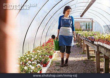 Greenhouse, Garden Center