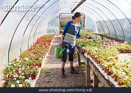 Gardening, Greenhouse, Garden Center