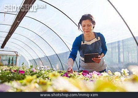 Information, Garden Center, Tablet-pc