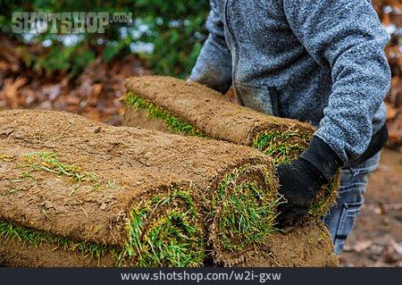 Gardening, Rolled Sod, Turf