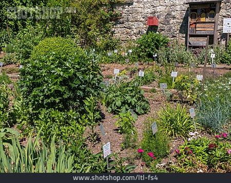 Flower Bed, Herb Garden