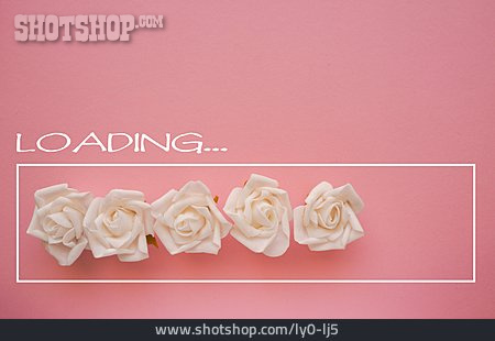 Rose, Wedding, Loading