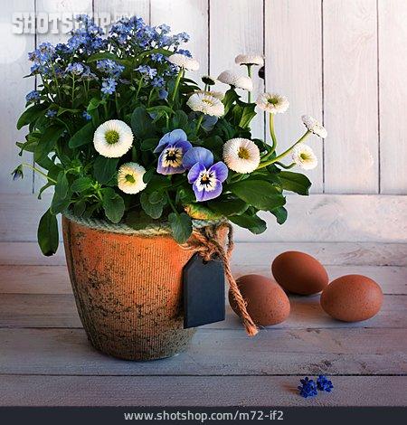 Spring, Eggs, Flower Pot