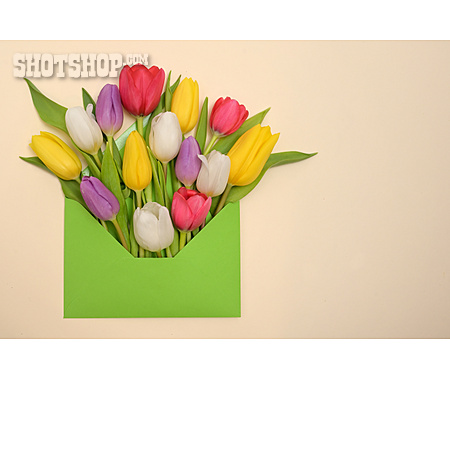 Tulips Bouquet, Mothers Day, Floral Greetings