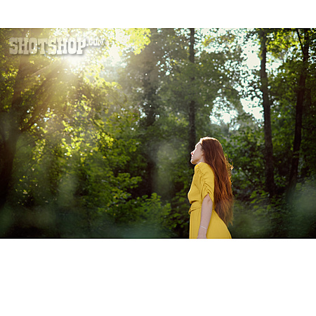 Sunlight, Forest, Glade