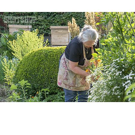 Senior, Garden, Gardening