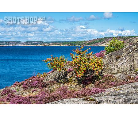 Coast, Skerry Island