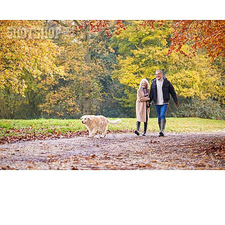 Golden Retriever, Walk, Walk The Dog, Older Couple