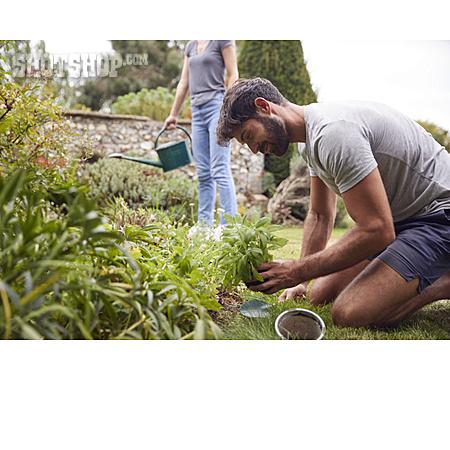 Garden, Gardening, Planting, Gardening