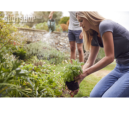Garden, Gardening, Gardening
