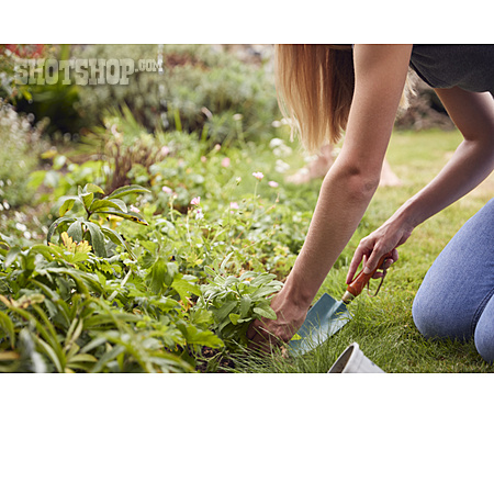 Planting, Gardening