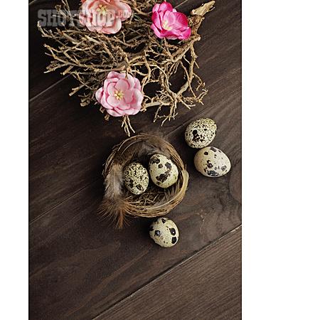 Decoration, Quail, Bird's Nest